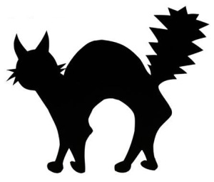 Fig.1 Black cat. What does it think about luck?
